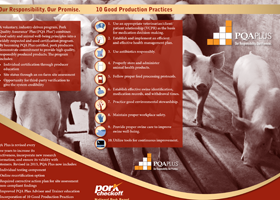 PQA Plus Brochure