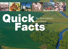 Quick Facts Book 2013