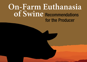On-Farm Euthanasia of Swine