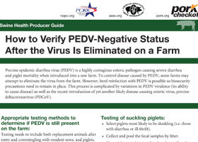Swine Health Producer Guide How to Verify PEDV-Negative Status After the Virus Is Eliminated on a Farm