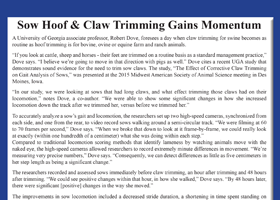 Sow Hoof & Claw Trimming Gains Momentum