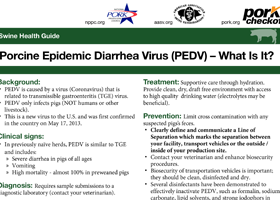 Porcine Epidemic Diarrhea Virus (PEDV) – What Is It?