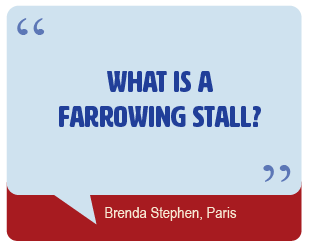 What is A Farrowing Stall?